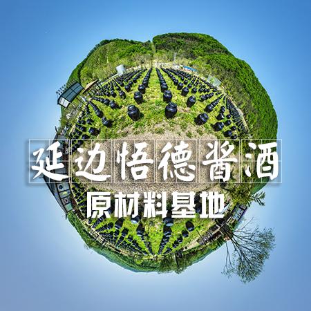 【延边悟德酱酒-原材料基地】VR全景展示